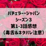 バチェラージャパンシーズン3 第1-3話感想(毒舌&ネタバレ注意)