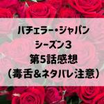 バチェラージャパンシーズン3 第5話感想(毒舌&ネタバレ注意)
